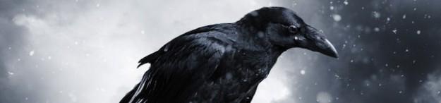 Wonder-108-Raven-Static-Image2